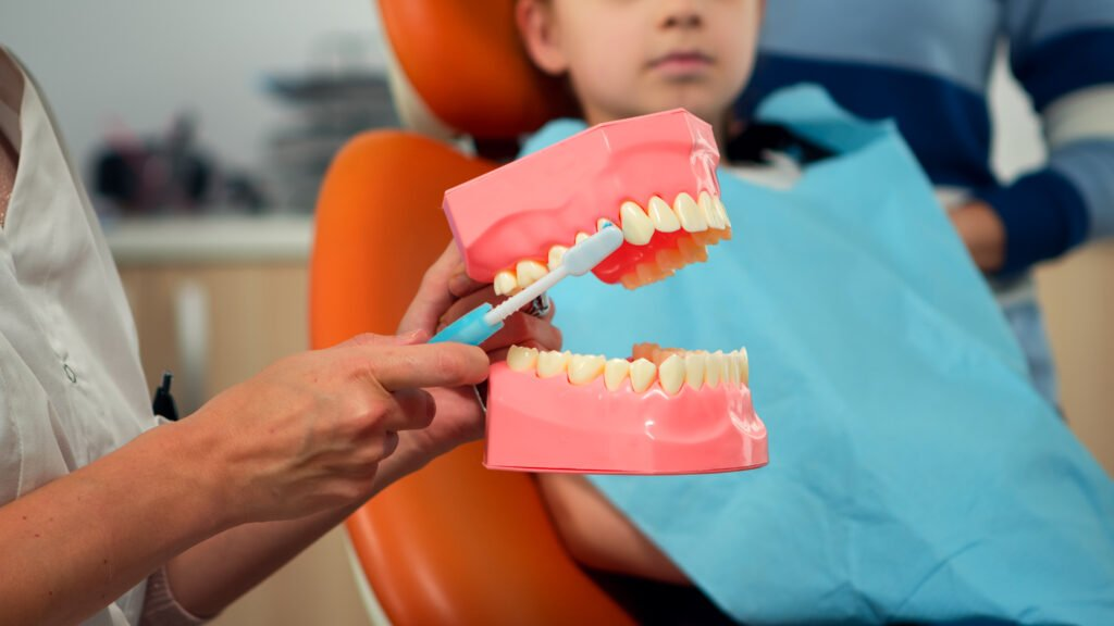 Pediatric dentist showing the correct dental hygiene using mock-up of skeleton